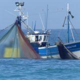Réglementations du secteur pêche